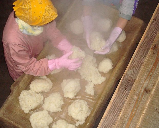 [:en]Glutinous rice with four-stage preparation - Exquisite and adventurous method of sake brewing[:zh]糯米熱掛四段-精湛具冒險的製醪方式[:]